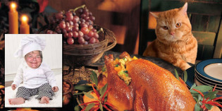 Ask Chef Lynn – Thanksgiving