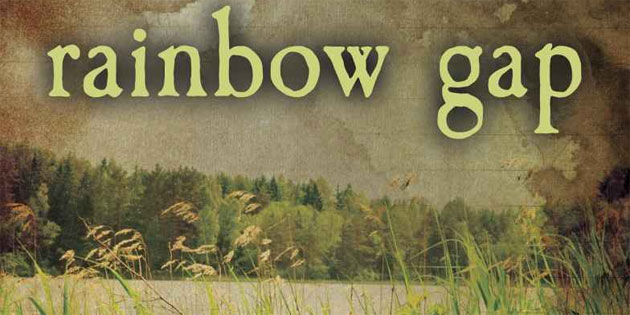 BOOK REVIEW: Rainbow Gap by Lee Lynch