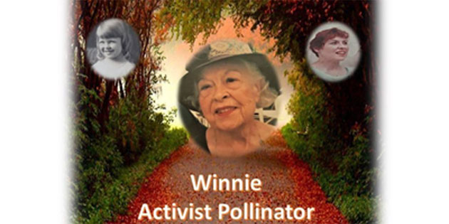 Winnie Foster: Local Shero Documentary